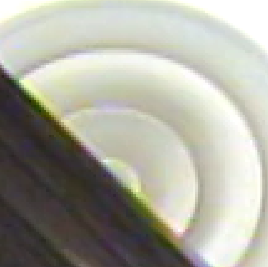 edge-hoji-05